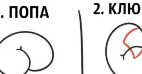 Художник показал, как создать рисунок из очертаний пятой точки