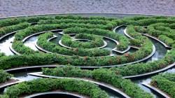 40 Garden Maze
