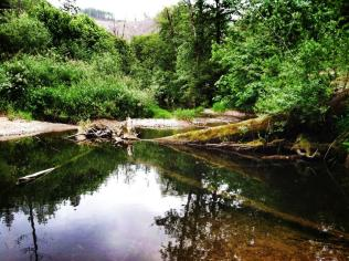 Knowles Creek, Mapleton, Oregon
