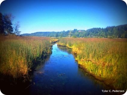 Karnowsky Creek downstream