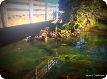 Karnowsky Creek bridge