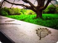 Oak art