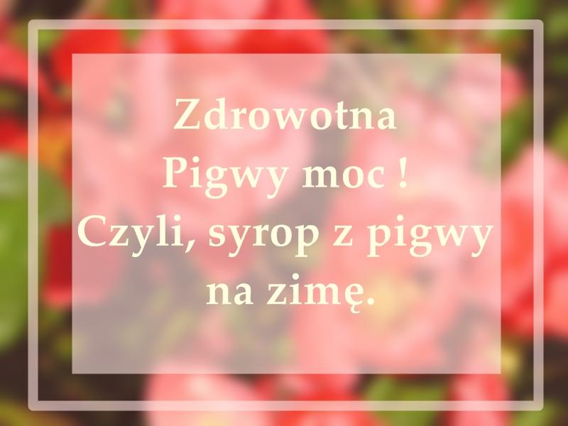 zdrowotna-pigwy-moc-czyli-syrop-z-pigwy-na-zime