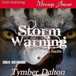 StormWarning_audiobook