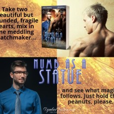 Now on Kindle and other third-party sites: Numb as a Statue (Suncoast Society)