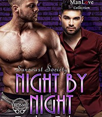 #releaseday – Night by Night (Suncoast Society, MM, BDSM) by Tymber Dalton