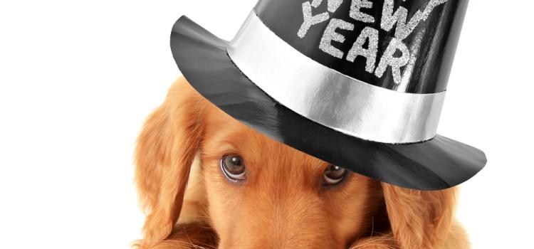 Happy 2021!