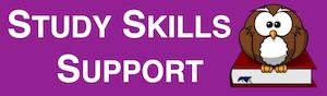 Study Skills Button