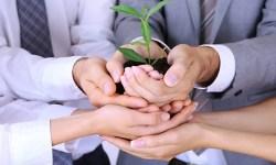 Leveraging Mentoring in Your Organisation