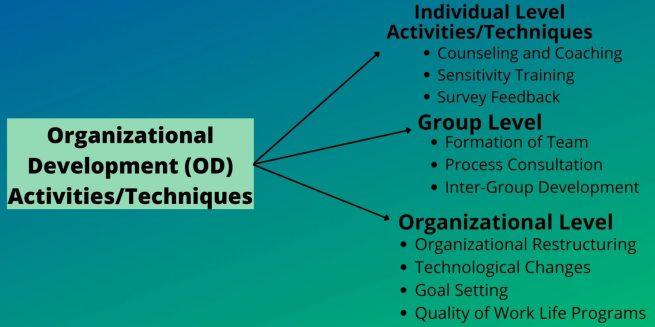Organizational Development Techniques or Activities