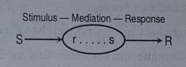 stimulus response relationship