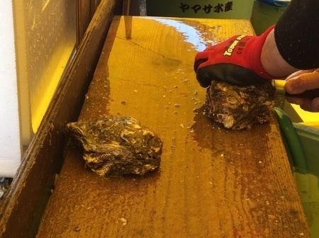 那珂湊ヤマサ水産岩牡蠣剥き