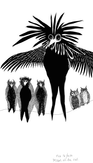 """Each of the shapeshifting owls transforms into a grand creature with flowing hair and protruding eyes"""