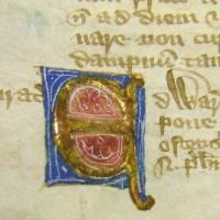 Unical Typography - Alphabet - Ornate, Renaissance,