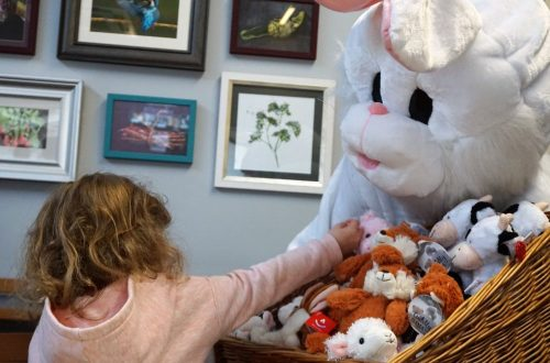 Breakfast with the Easter Bunny at Bridgemere Garden Centre