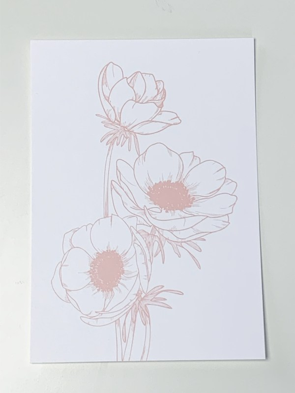 vonmelleart flower illustration