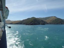 0294. Final views of South Island