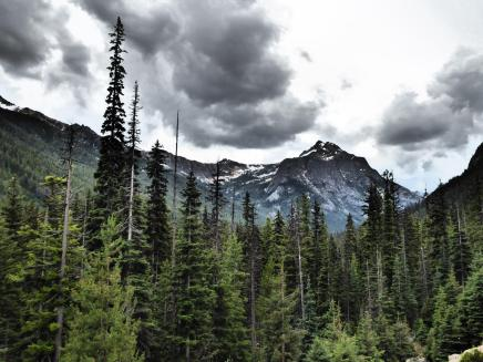 028. Climbing up to Washington Pass