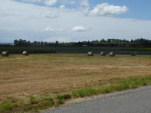 060. Flatlands after Burlington