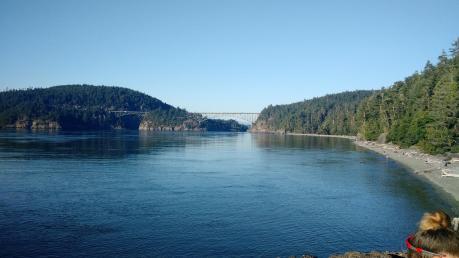 063. Deception Pass Bridge from the campsite