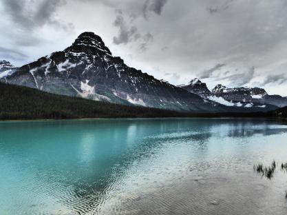 156. Waterfowls Lake