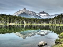177. Herbert Lake