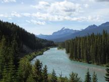 183. Bow River