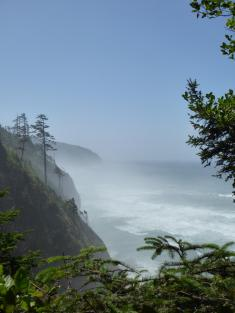 016. Cape Lookout State Park