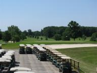 Tyrone_Hills_Golf_Carts