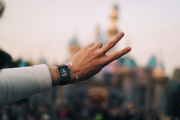 TY-SEVERE-APPLE-WATCH-DISNEYLAND-CASTLE-GEAR