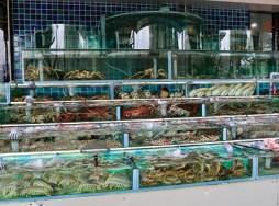 Sai_Kung_Village_seafood