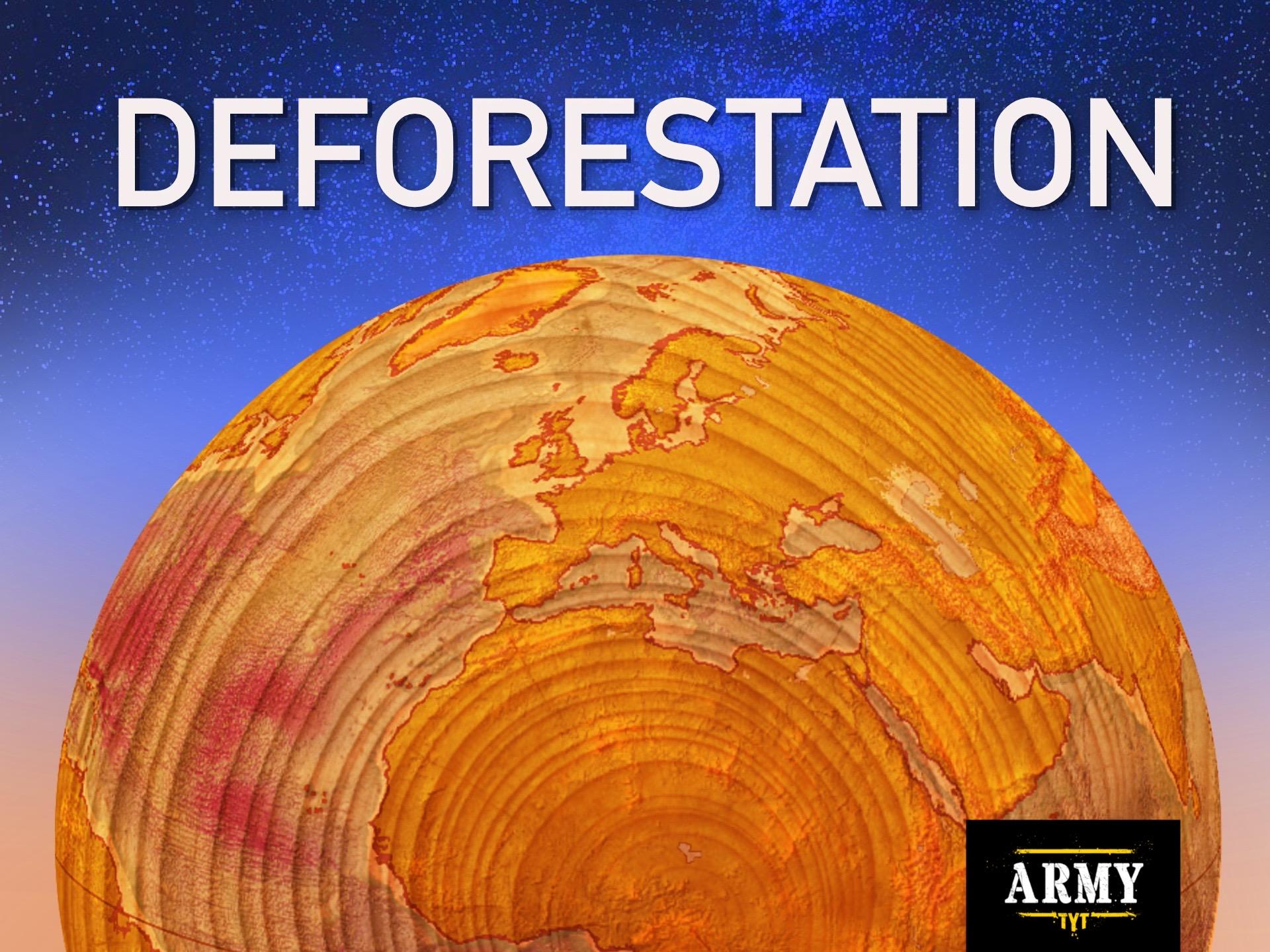 Read more about the article Deforestation: Global Devastation