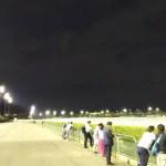 2020 川崎 若葉オープン 仕分け予想 クラウンカップ組、ボンモマン・スマイルウィがリード◎○