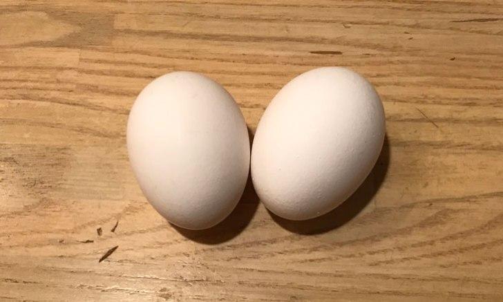 コンビニ 卵