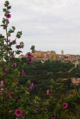 Ile d'Elbe en famille et fourgon aménagé : la douceur de vivre Toscane (Italie) 33