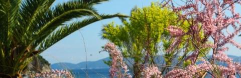Ile d'Elbe en famille et fourgon aménagé : la douceur de vivre Toscane (Italie) 51