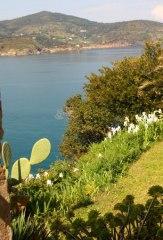 Ile d'Elbe en famille et fourgon aménagé : la douceur de vivre Toscane (Italie) 39