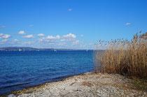 Blick vom Kreuzlinger Park auf den Bodensee
