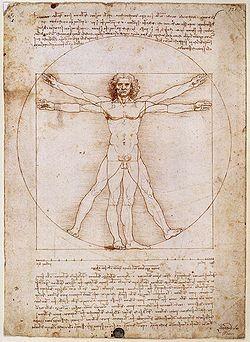 Hombre de Vitruvio.Leonardo.Expresión del cánon renacentista