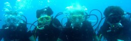playa del carmen scuba diving sites