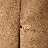 Bed Bug Eggs in Furniture