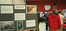 "Theme ""Symbiosis"" display in the Auditorium. 2010"