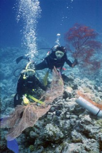 Andrea and Branwen with gorgonians, Palau