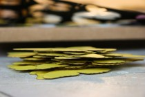 A stack of newly cut yellow butterfly parts.