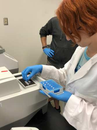 Setting the vials of amplified DNA into the PCR machine