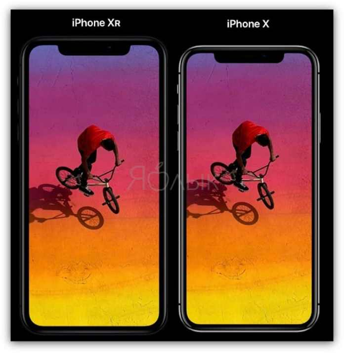 IPhone XR and iPhone X Size Comparison