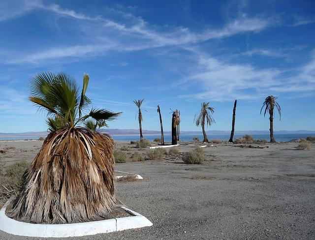 Ipernity Salton Bay Yacht Club Site 2417 By Rons Log