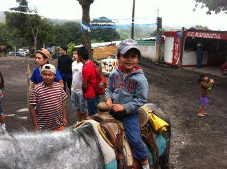 pics on horses!