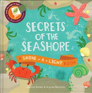 Picture of Shine-A-Light: Secrets of the Seashore