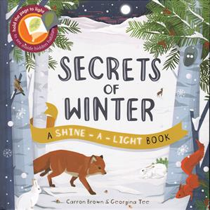 Picture of Shine-A-Light: Secrets of Winter